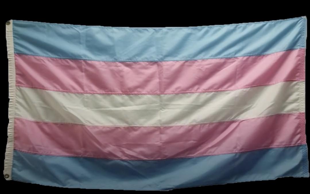 History of the Transgender Flag
